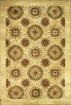 Indian Rectangular Area Rug 45582 area rugs