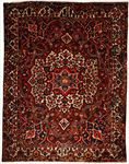 Bakhtiari Rectangle Area Rug 63741 area rugs