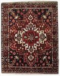 Bakhtiari Rectangle Area Rug 63742 area rugs